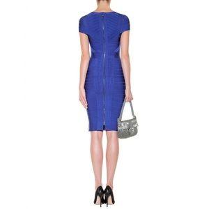 Herve Ledger Dress